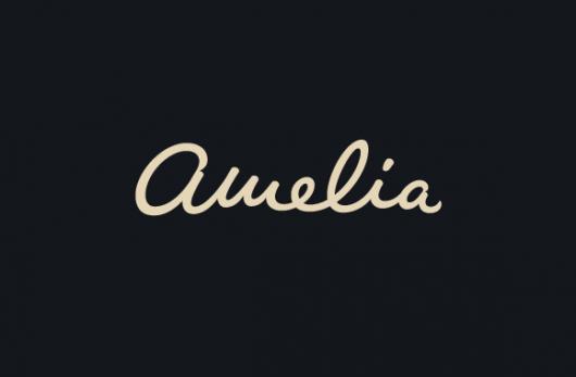 Designspiration — Type Division — Amelia