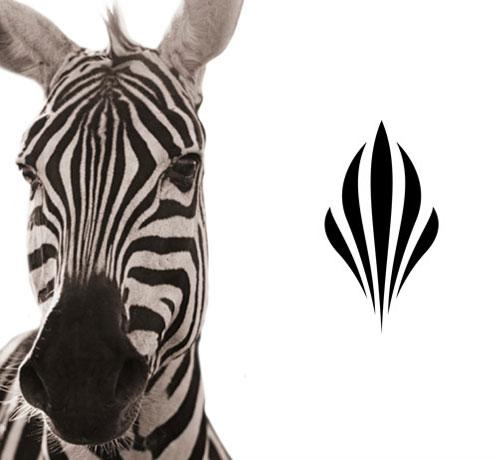 Zebra-inspired | Logo Design Love