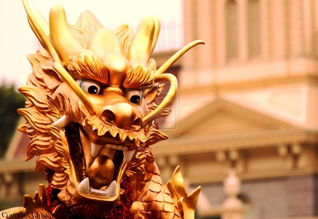 Year of the Dragon by *NoriNeko-Noriaki