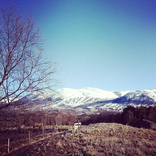 @junebug | Good morning #oppdal! | Webstagram - the best Instagram viewer