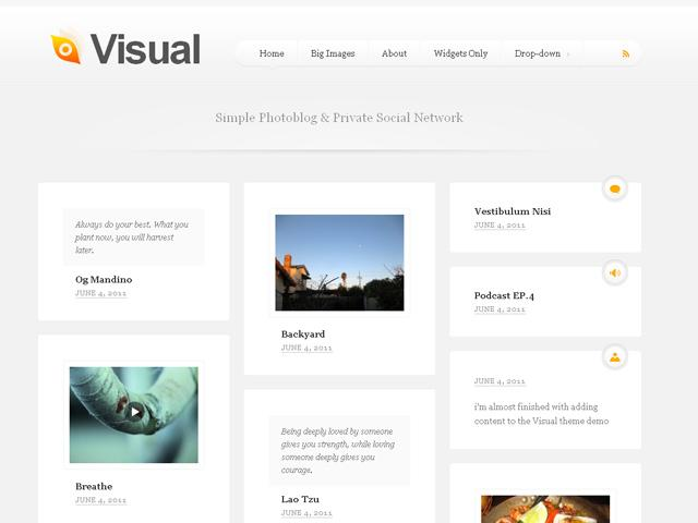 Visual | Professional WordPress Themes | DevPress