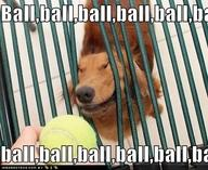 Search results for ball