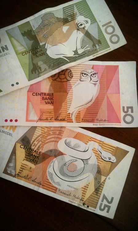 Scientific Illustration   rhea137: Our money is pretty.