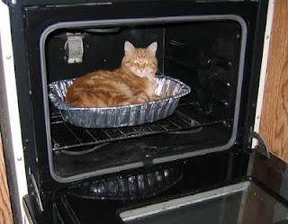 Grace Elliot - blog.: Cat pies? -Victorian attitudes to cats.