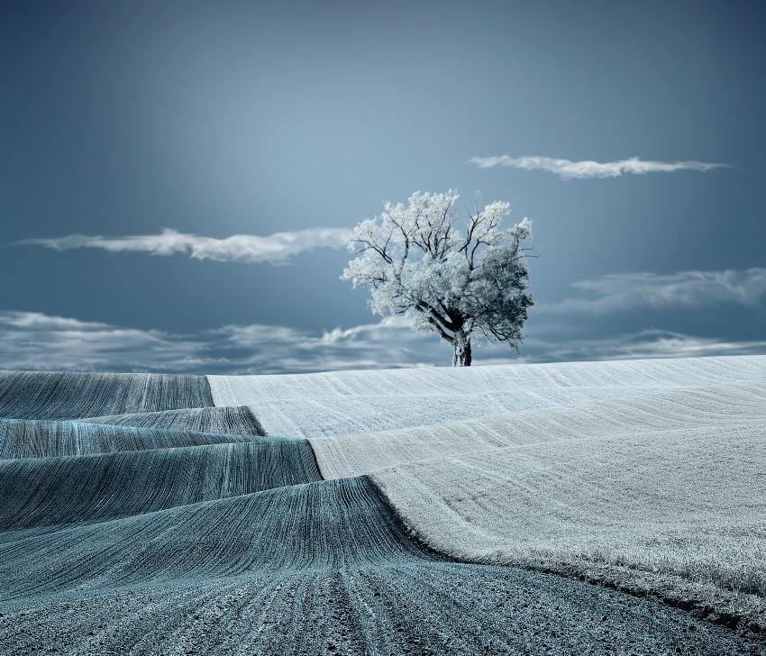 35PHOTO - Caras Ionut - No title