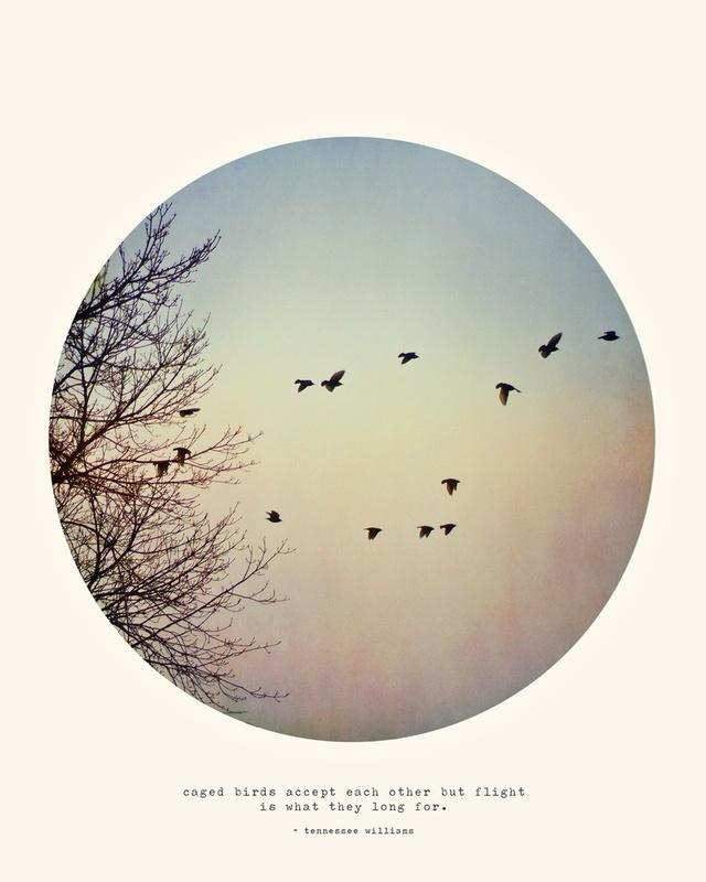 Caged Birds Art Print by Tina Crespo | Society6