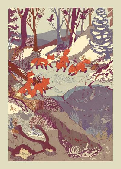 Fisher Fox Stretched Canvas by Teagan White | Society6