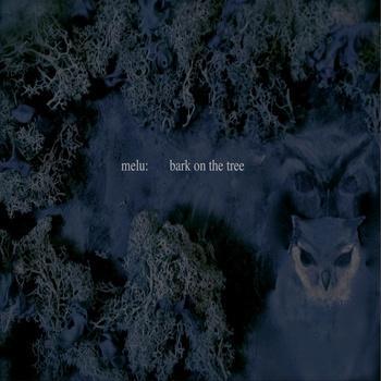 bark on the tree   melu: