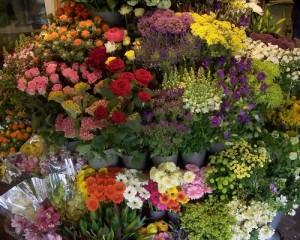 Flower Shops in London for Valentine's Day Bouquets Step by Step List, How to Guide