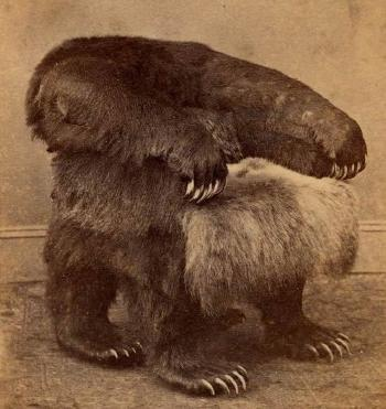 bear chair | Flickr - Photo Sharing!