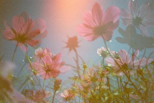 filmspiration, (by angela marlaud)
