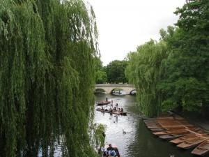 Things to Do during June in London Step by Step List