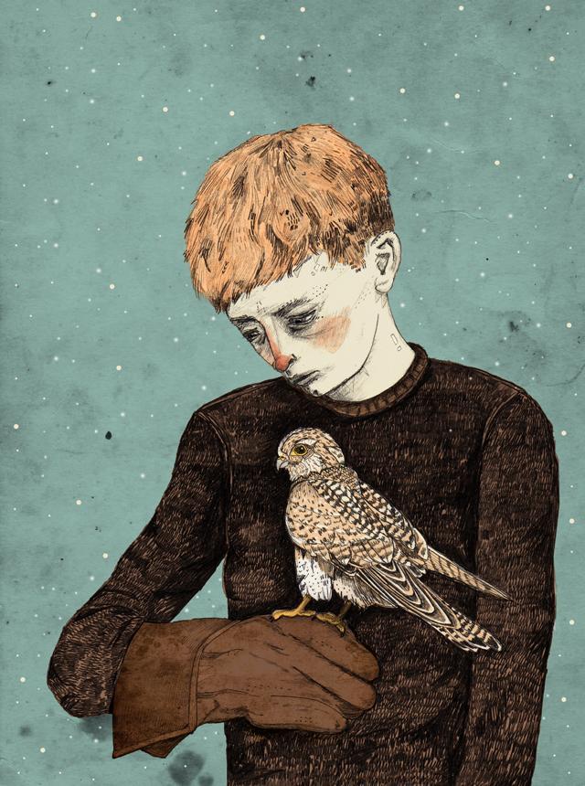 Sandra Dieckmann Illustration: Kes // Colour Variation & New Products