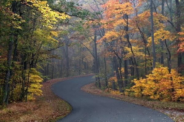 autumn,brown autumn brown roads 2000x1333 wallpaper – Autumn Wallpaper – Free Desktop Wallpaper