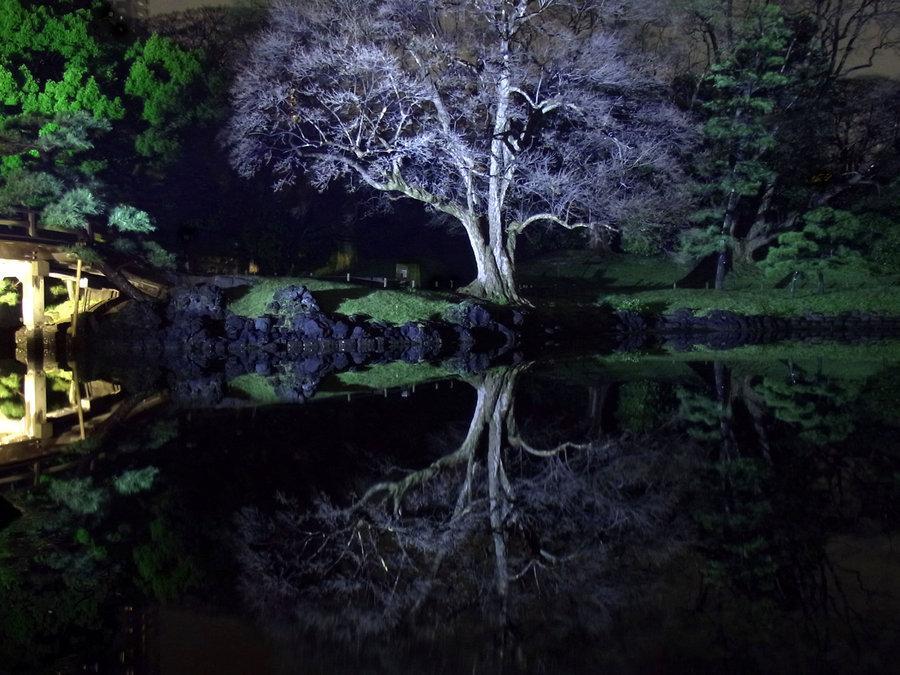 JAPANESE GARDEN REFLECTION 50 by *hirolu