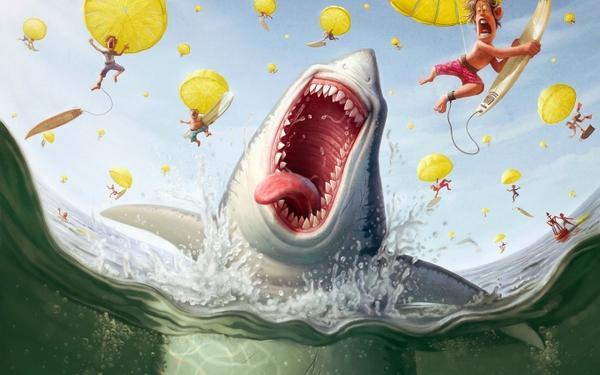 funny,sharks funny sharks 1440x900 wallpaper – Funny Wallpaper – Free Desktop Wallpaper