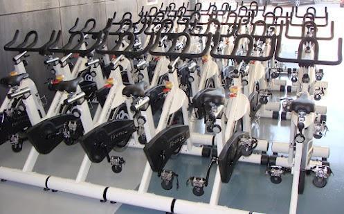 Ortus Fitness: Google
