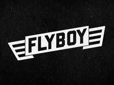 flyboy_take_two.jpg (400×300)