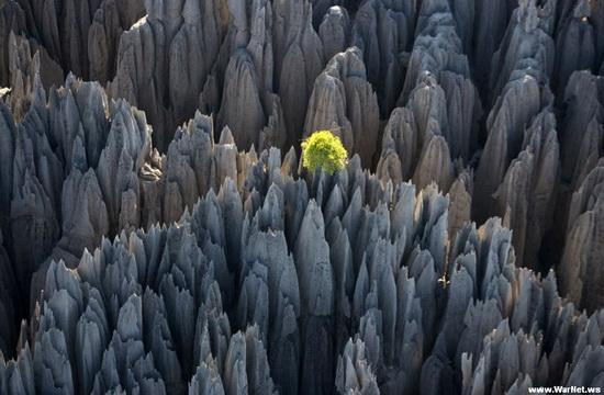 THE WORLD GEOGRAPHY: The World Through Amazing Photos