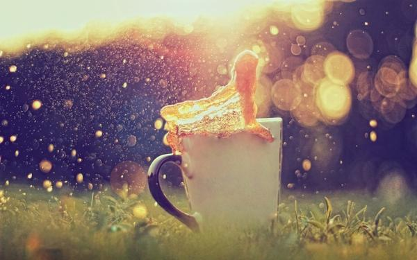 coffee,sunlight coffee sunlight macro depth of field 1920x1200 wallpaper – Fields Wallpaper – Free Desktop Wallpaper
