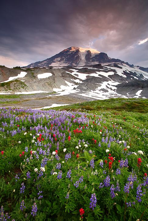 Sunlit Clouds on Mt. Rainier: Photo by Photographer Daniel Ewert - photo.net