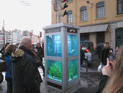 Telefonzellen Aquarium | iGNANT