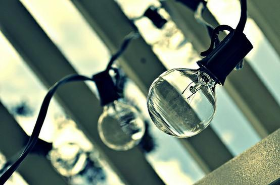 photography / love me some bulbs by mrs. french, via Flickr