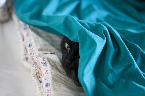 Hiding by *Svavelstickan