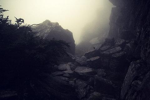 tumblr_lced670w7B1qamm7n.jpg (JPEG Image, 480×320 pixels)