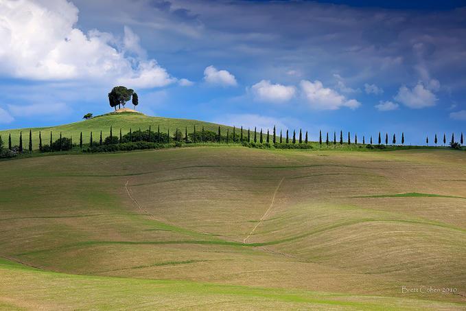 Tuscany: Photo by Photographer Brett Cohen - photo.net