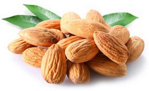 Almonds Weight Loss