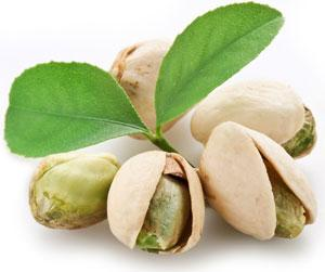 Consumption of Pistachios Promotes Beneficial Gut Bacteria