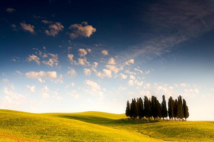 : Photo by Photographer Michele Berti - photo.net