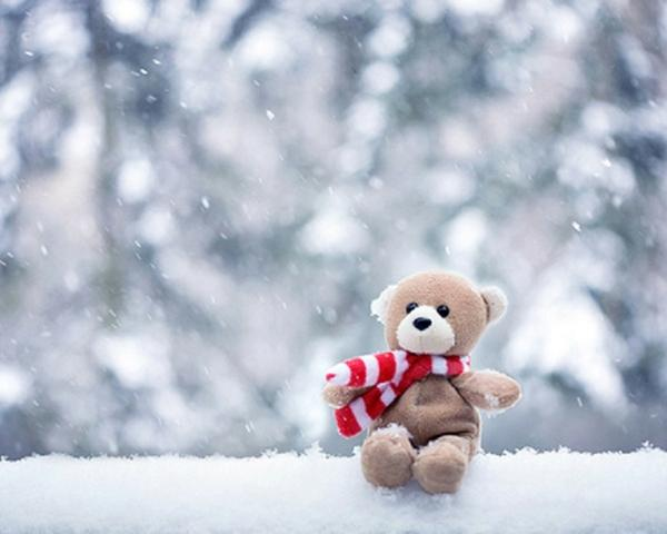 snow,little snow little stuffed animals teddy bears 1280x1024 wallpaper – Bears Wallpaper – Free Desktop Wallpaper