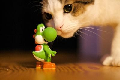 Pure Geek / Sup Yoshi!? #photography #NES #cuteoverload