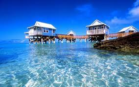 beaches - Google Search