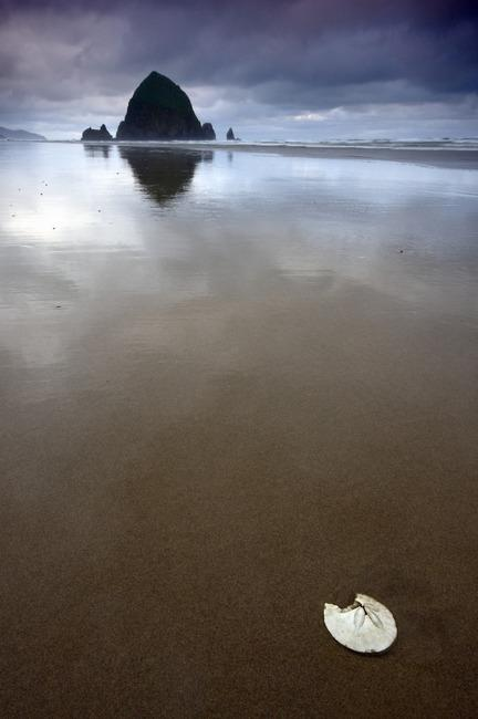 Cannon Beach Art Prints by Tyler Huston - Shop Canvas and Framed Wall Art Prints at Imagekind.com