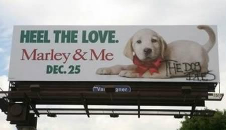 12 Funniest Billboard Graffitis - Oddee.com