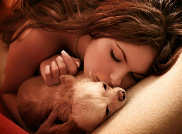 women,brunettes brunettes women dogs hdr photography chihuahua 1600x1180 wallpaper – Dogs Wallpaper – Free Desktop Wallpaper