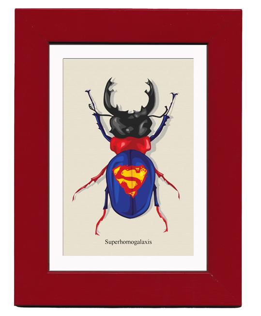 Awesome Superhero Bugs | Daily Inspiration