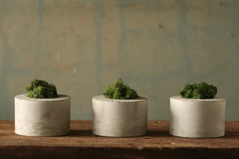 Concrete Moss Trio by atstuart on Etsy