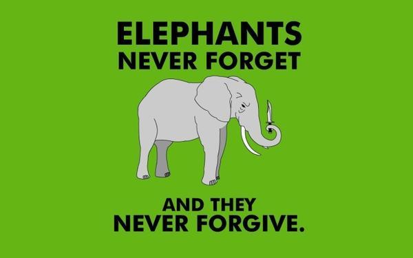 humor,elephants humor elephants 1440x900 wallpaper – Humor Wallpaper – Free Desktop Wallpaper