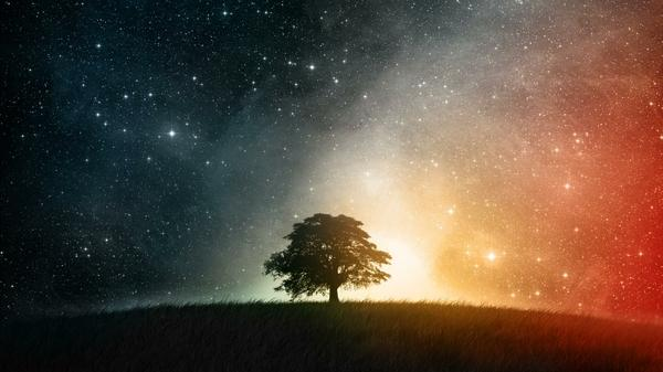 trees,night trees night colorful stars aurora borealis deviantart fantasy art creative skyscapes photomanipulati – Fantasy Wallpaper – Free Desktop Wallpaper