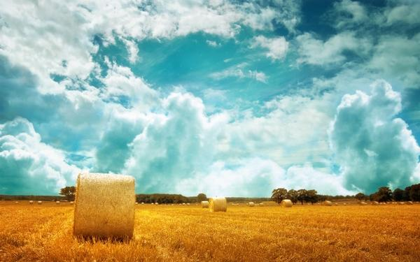 clouds,fields clouds fields hay farms skyscapes 2560x1600 wallpaper – Clouds Wallpaper – Free Desktop Wallpaper