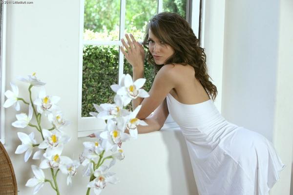women,brunettes brunettes women models window panes malena morgan 1600x1067 wallpaper – Windows Wallpaper – Free Desktop Wallpaper