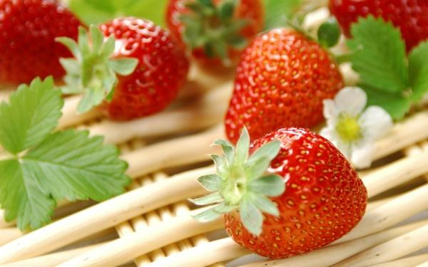 strawberries strawberries 1920x1200 wallpaper – Strawberries Wallpaper – Free Desktop Wallpaper