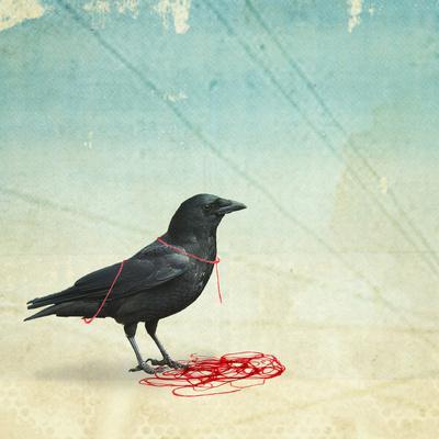 freedom _ black crow Art Print by Vin Pezz | Society6