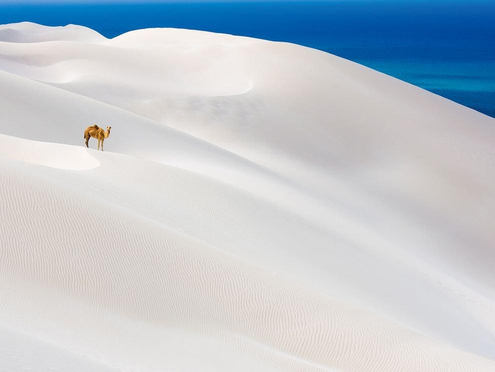 Yeman Sand... - Craized.com
