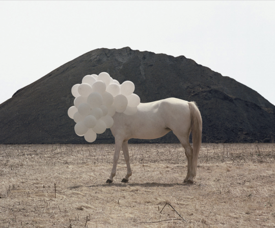 Designspiration — Death of an Image – Andrea Galvani | The Design Ark