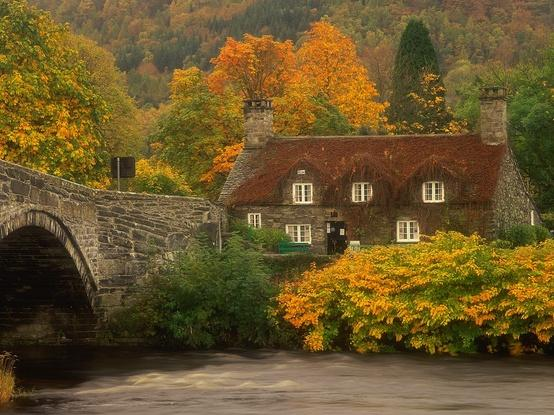 Fabulous Fall Foliage / Wales in Autumn